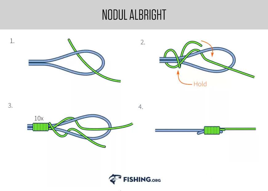 Noduri pescaresti - Albright