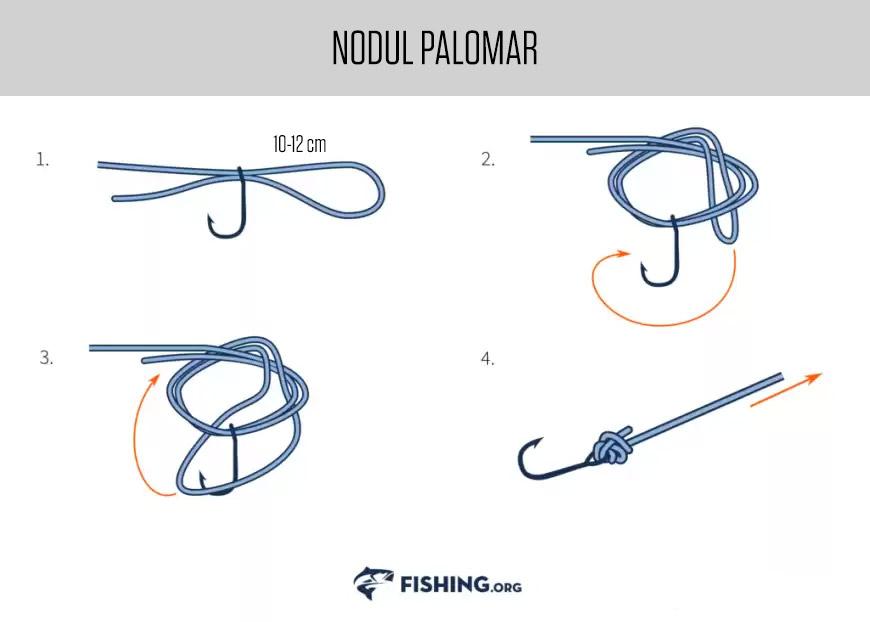 Noduri pescaresti - Nodul Palomar