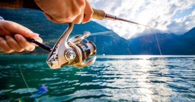 Pescuitul la musca pentru incepatori