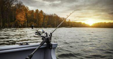 Montura combi rig: informatiile de care ai nevoie pentru o partida de pescuit fara probleme